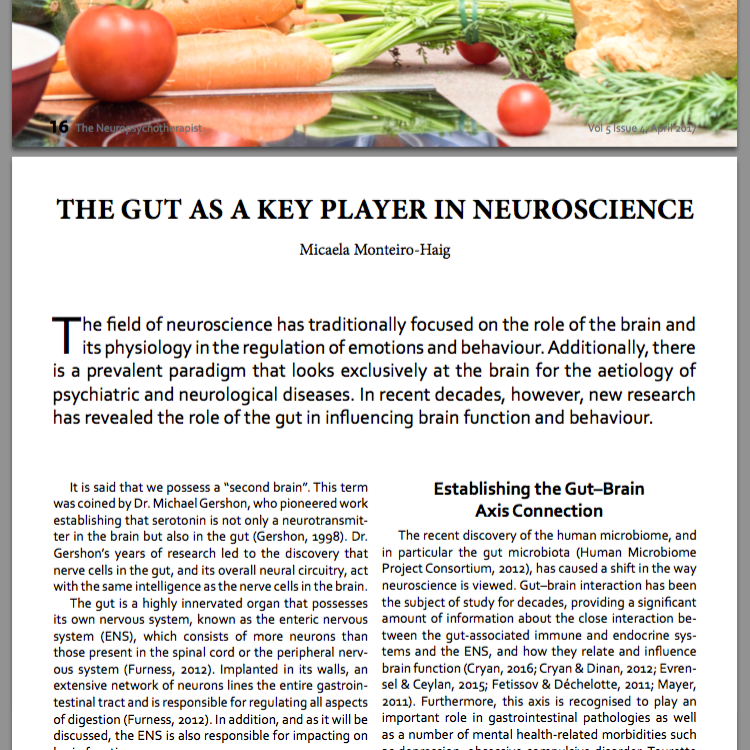 the Neuropsychotherapist article - the gut as a key player in neuroscience